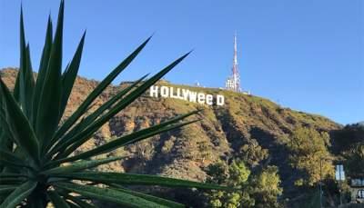 Cambian el famoso cartel de Hollywood por 'Hollyweed'