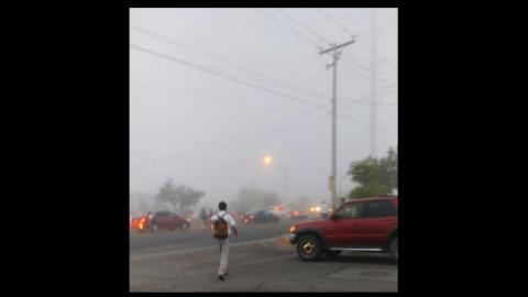 Sorprende a cachanillas neblina