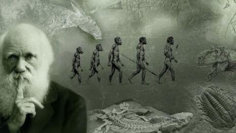 """Subastarán """"El origen de las especies"""" con anotaciones de Darwin"""