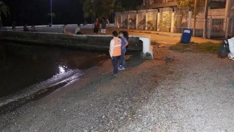 Aguas del mar Caribe guatemalteco retrocedieron hasta cuatro metros