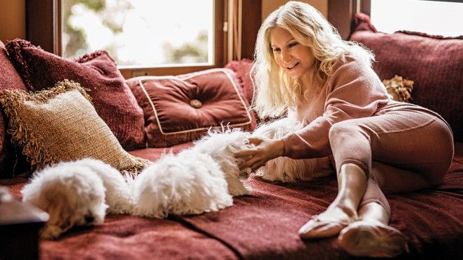 Resultado de imagen para Barbra Streisand clones perro