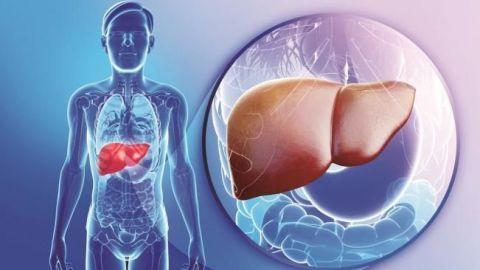 Hepatitis y cáncer de hígado, dúo letal