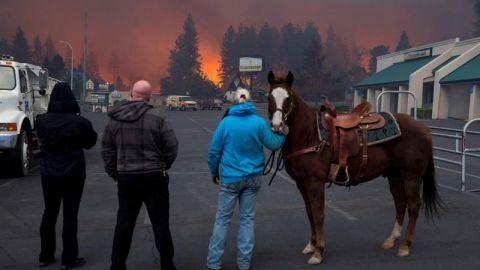 """Trump culpa a California de los incendios por su """"mala gestión"""" forestal"""