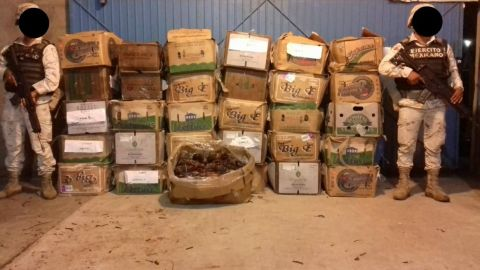 Incautan más de 1, 800 piezas de langostas en SQ