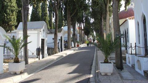 Cementerios en Mérida, foco de criaderos de moscos del dengue