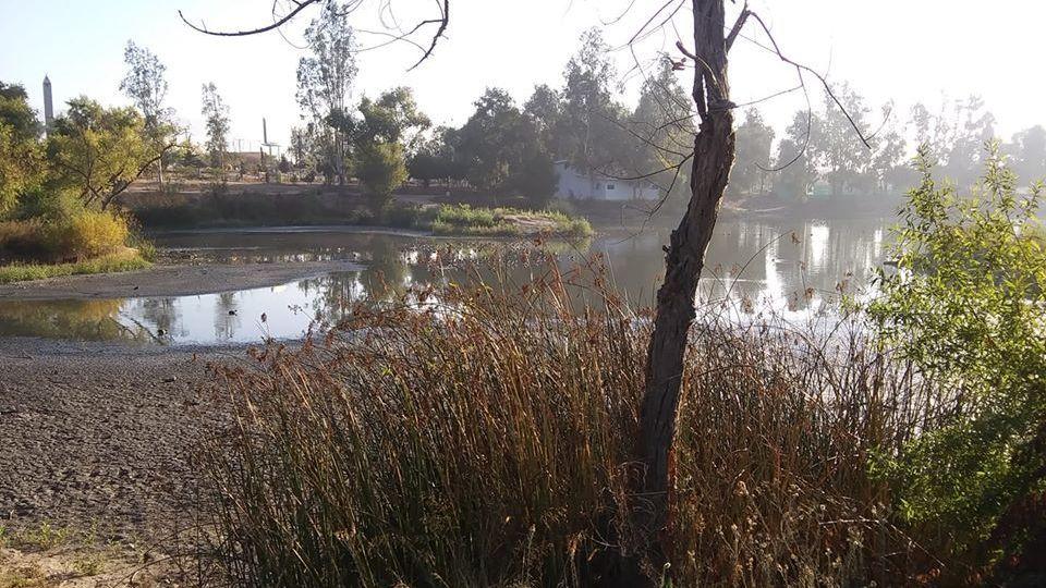 Dejan sin agua el lago del Parque de la Amistad - Cadena Noticias