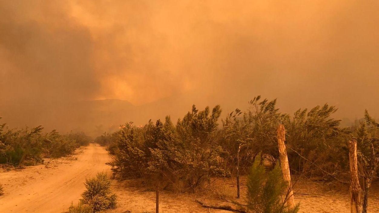 Se esperan vientos de Santana hoy sábado; temen por incendios - Cadena Noticias