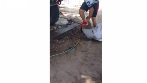 "VIDEO: ""Autodefensas"" de Mexicali castigan a ladrón"
