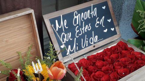 VIDEO: Se duplicará precio de flores para el 14 de febrero