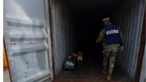 Aseguran otro cargamento de droga en Terminal Portuaria