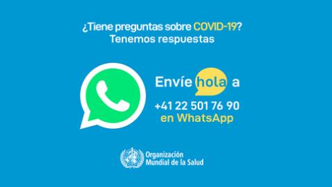 ¿Cómo utilizar el WhatsApp informativo de la OMS?