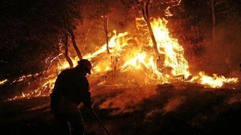 Se registran 127 incendios forestales en Yucatán