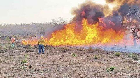 Suman más de 6 mil hectáreas afectadas por incendios en Yucatán