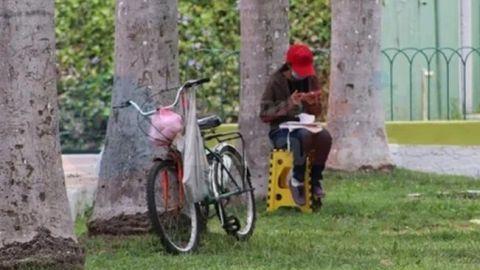 Por falta de internet, joven estudia desde un parque