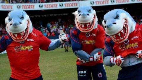 El Sevilla descarta revivir al Club Veracruz