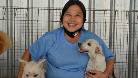 Mujer rescata a más de mil 400 perros de los carniceros