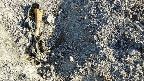Colectivos hallan 6 cuerpos más en Tijuana