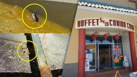 Otra comida china en Tijuana con gusanos y cucarachas