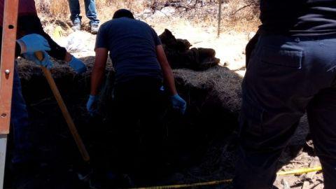 Fosa clandestina, ahora en Tecate, encuentran tres cuerpos