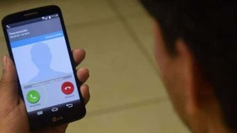 Detectan más de 14 mil celulares en penales federales