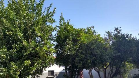 ¡Prepárate! Ya vienen las lluvias a Baja California