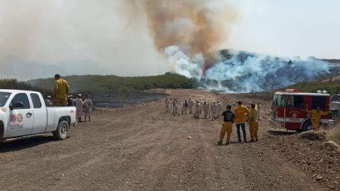 Viene otra vez el calor; llaman a prevenir incendios forestales