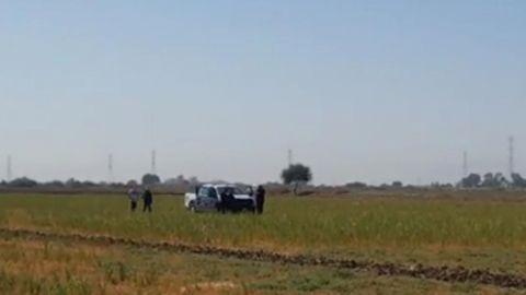 Otro cadáver es tirado en una parcela en el Michoacán de Ocampo en Mexicali