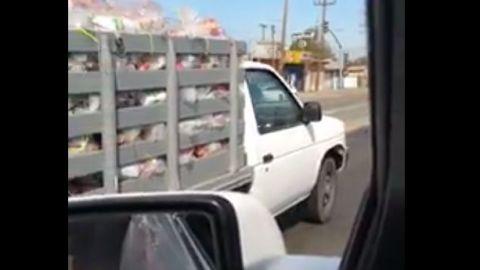 VIDEO: Denuncian acarreo y compra de votos en consulta vecinal