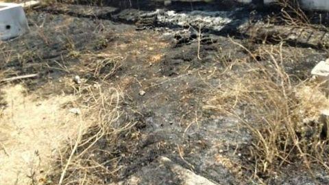 Hallazgo de más restos humanos en fosa clandestina en Tijuana