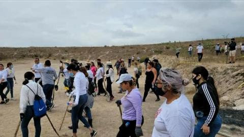 Colectivos han encontrado más de 400 cuerpos de desaparecidos sin vida