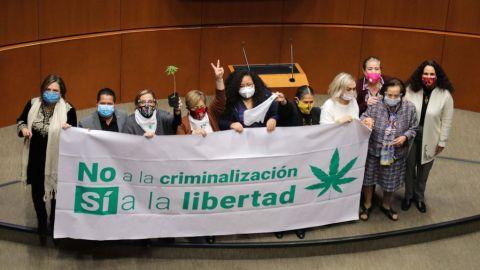 Dictamen de despenalización de la marihuana sigue con criminalización