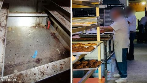 VIDEO: Excremento de ratones e insectos en panadería de Tijuana