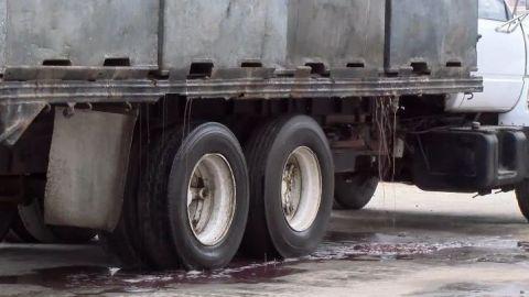 Harineras apestosas de Ensenada siguen cerradas