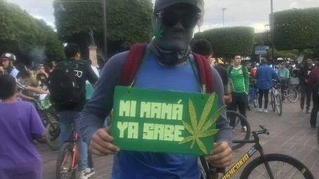 Entra en vigor uso medicinal de la marihuana