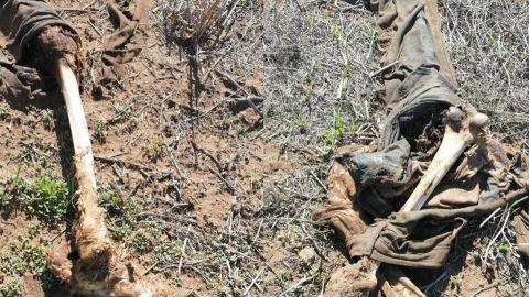 Familiares de desaparecidos localizan cuerpo sin vida en San Quintín