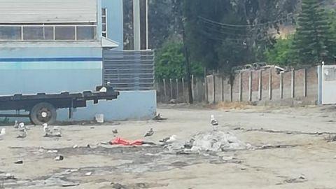 Sigue contaminación en Parque pesquero de Ensenada