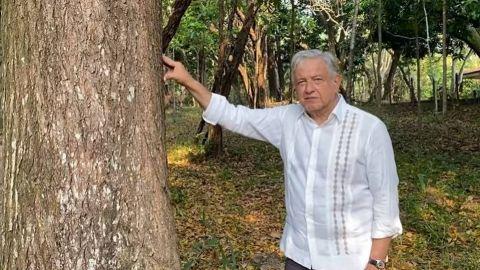 AMLO propondrá a Biden dar visas a campesinos del programa Sembrando Vida
