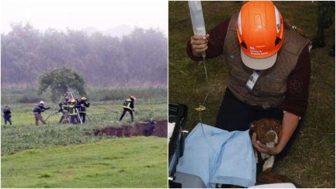 Rescatan a los dos perros que cayeron en socavón de Puebla