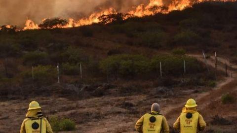 Advierten de incendios por ola de calor