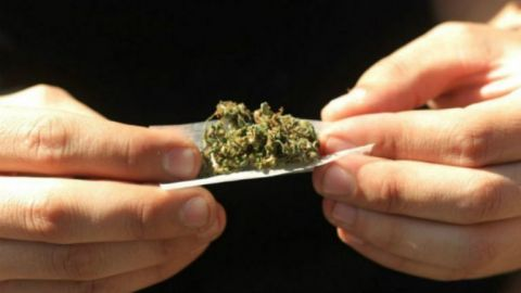 Corte avala despenalización de uso lúdico y recreativo de la mariguana