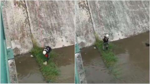 Rescatan a perrito que estaba en un canal tras lluvias en Nuevo León