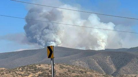Continúa combate de incendios forestales en Ensenada