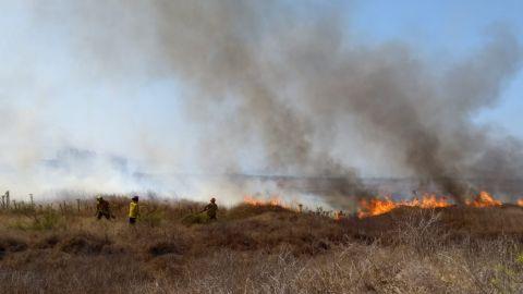 Incendio forestal en La Lagunita