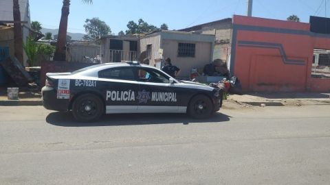 Alterar el orden público, la causa de infracción más común en Maneadero