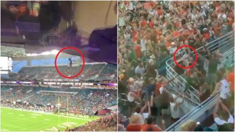 Aficionados salvan a gatito que cae del techo en estadio de fútbol americano